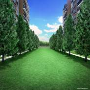 Lawn Vista